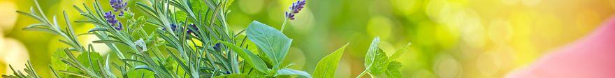 vemo_vsv_herbal_plants