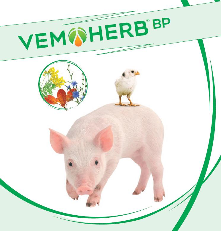 VemoHerb BP