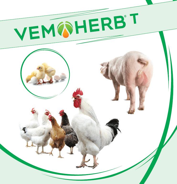 VemoHerb T
