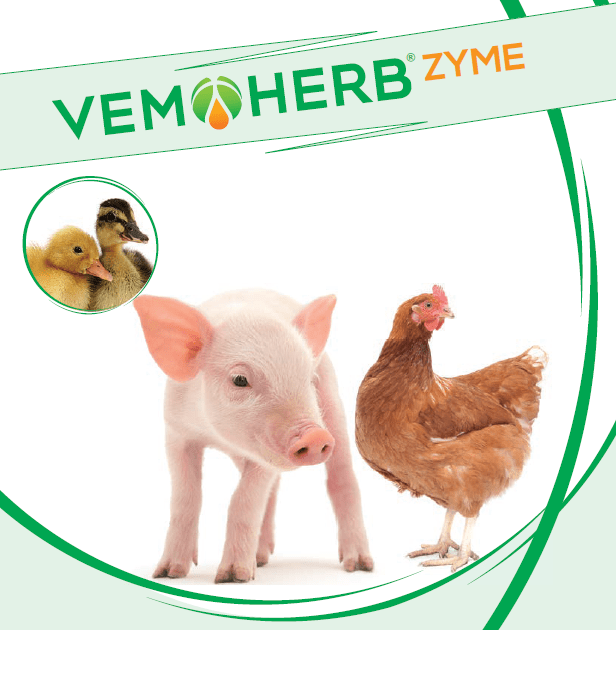 VemoHerb Zyme