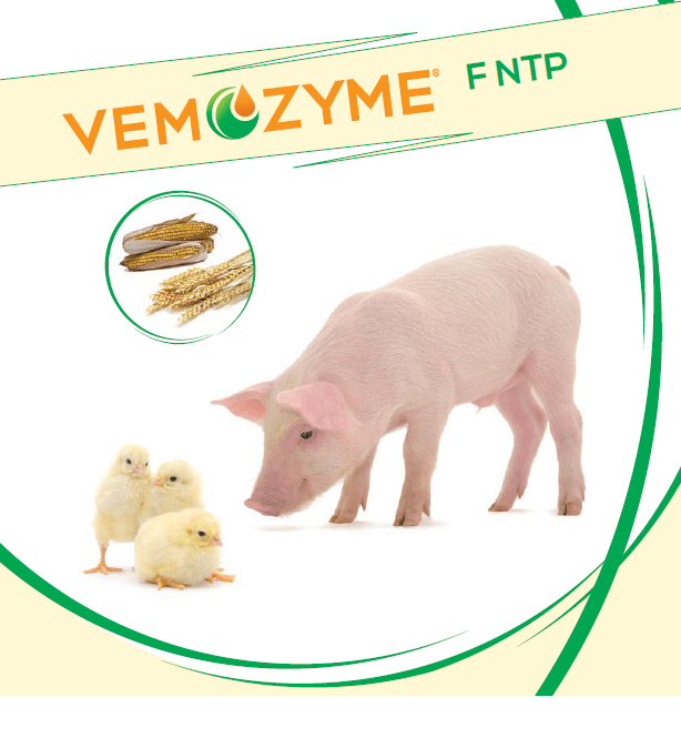 VemoZyme F NTP
